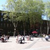 Occidental Park Programming Suggestions