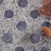 Sidewalk Prism Preservation