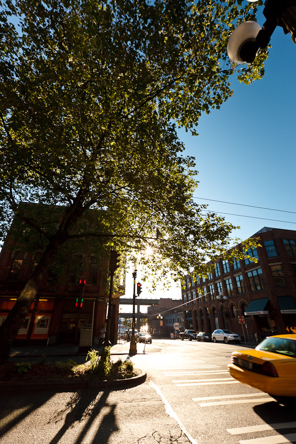 Sunny day in Pioneer Square - Photo credit Christopher Nelson