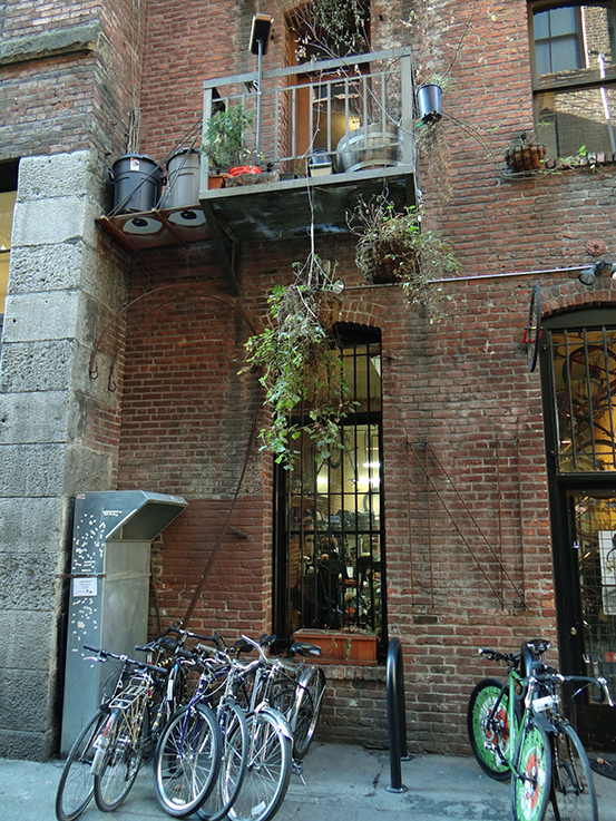 Back Alley Bike Repair, located in a historic brick building